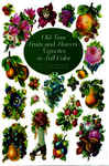 Old-Time Fruits and Flowers Vignettes in Full Color 1971048